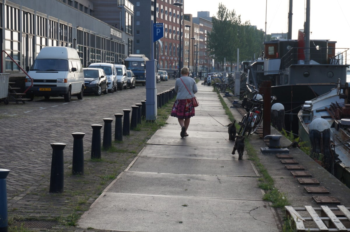 This is just outside 'downtown' Amsterdam by my cousins snackbar. I could stroll this street all day